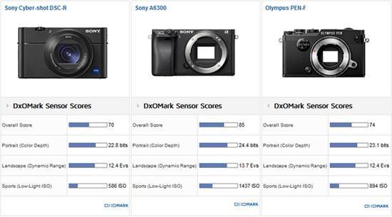 DxO,索尼黑卡RX100 V,索尼A6300,APS-C画幅传感器
