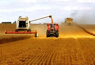 """粮食生产""""机器换人"""" 从此告别""""三弯腰""""时代"""