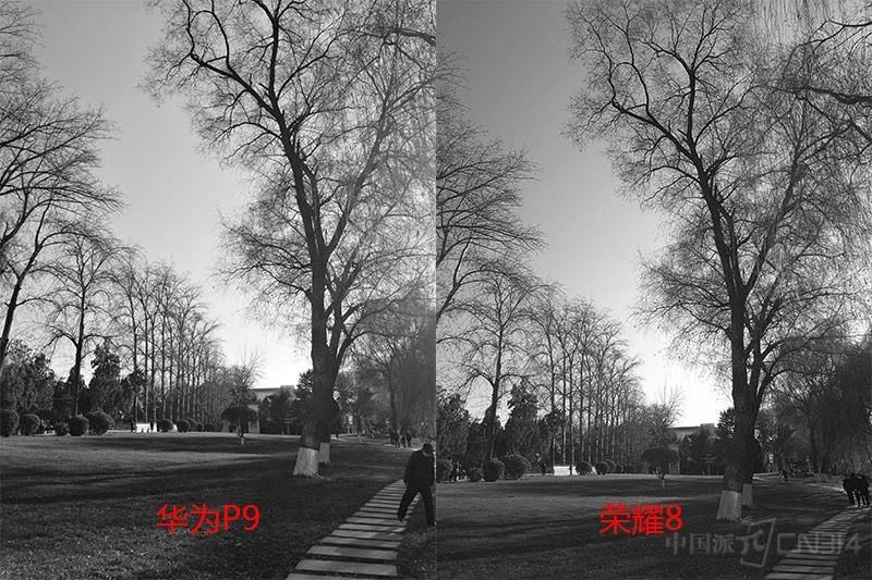 论徕卡色彩的重要性:看荣耀8与华为P9街拍