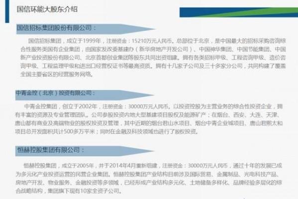 国信环能投资股份有限公司