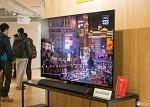 工信部杨旭东:自主研发OLED电视的发布意义非凡