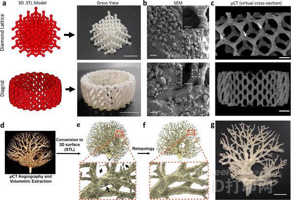 生物学家将激光切割机改装成低成本SLS 3D打印机