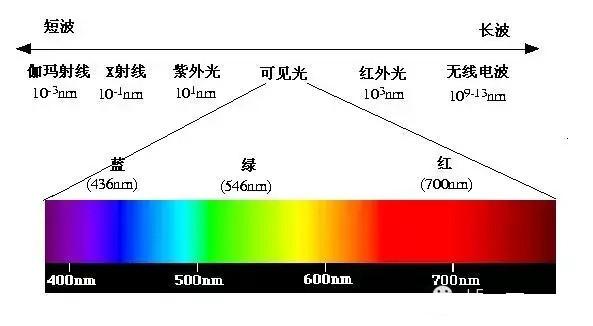 五种单色光对植物生长的影响
