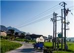 电网设备商抢食7000亿农网改造市场