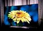 OLED电视价格为何居高不下?