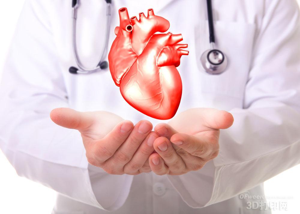 如何简易制作心脏模型