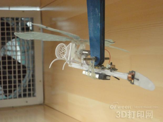 """图3 3D打印机器""""蜻蜓""""风洞测试"""
