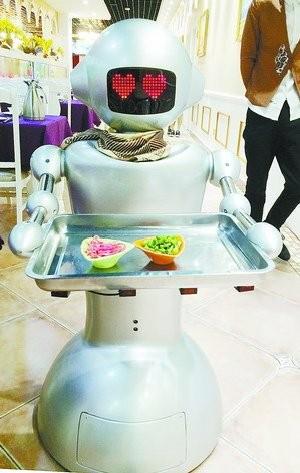 保姆机器人,什么是保姆机器人 保姆机器人的最新报道