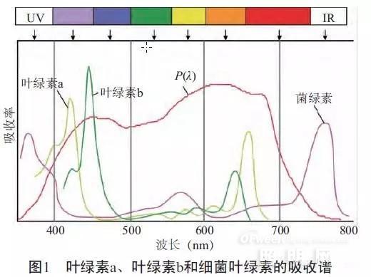 详解影响植物生长照明系统效果的两大因素