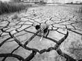 数说土壤修复市场:土壤污染三大关注点