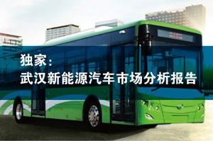 【独家】武汉新能源汽车市场分析报告