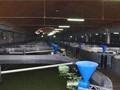 剖析LED照明在工厂化水产养殖方面的作用