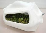 【图解】生物太阳能电池:苔藓居然也能发电