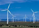 风电业再现恐怖一幕 弃风限电再升级