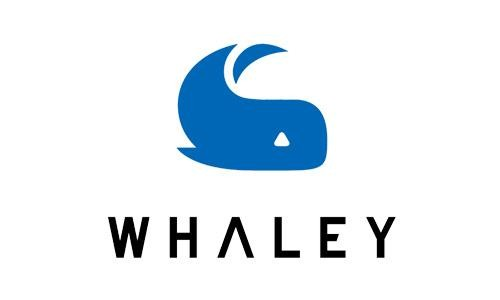 微鲸4.5亿入股康佳:一次各取所需的联姻?