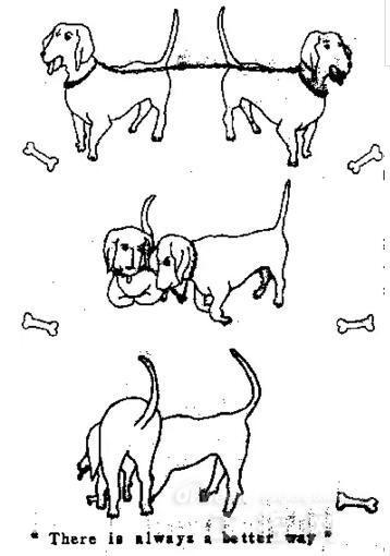 简笔画 教学图示 手绘 线稿 358_510 竖版 竖屏