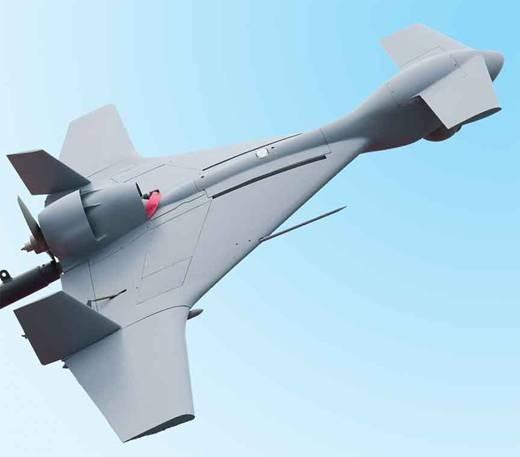 """以色列制造的""""哈罗普""""无人机"""