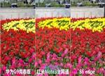 红米Note3/华为G9/S6 edge拍照对比评测:差距会有多大?