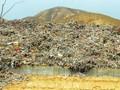 生活垃圾野蛮增长快速 垃圾处理处置之困何解?