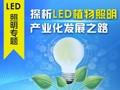 中国LED植物照明产业化之路还有多远?