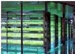 植物工厂现状、发展瓶颈及战略