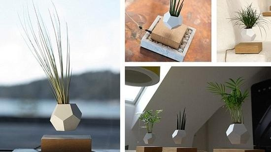 LYFE悬浮花盆:逼格满满 植物也能飞
