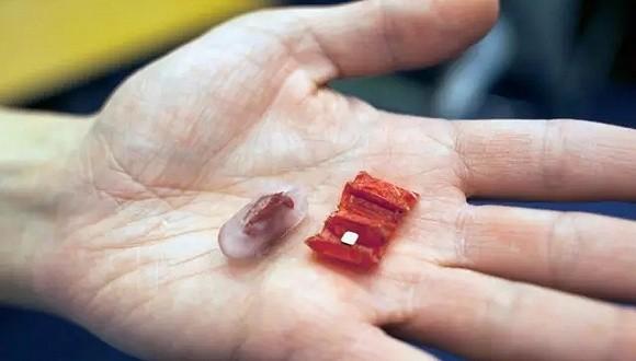 可食用的微型机器人——折叠机器人