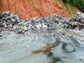 【聚焦】广州白云一学校恶臭笼罩:村民堆放垃圾黑水四溢