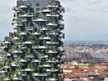 节能环保前沿技术:建筑节能与空气净化技术结合(图)