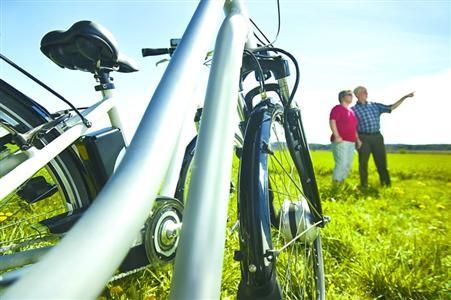 """德国如何破解电瓶车""""困局""""?骑电动自行车也需驾照"""