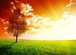 【正能量】李河君和马斯克:地球东西两级上的太阳