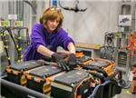 国内电池行业洗牌在即 自贸区容许外资独资生产