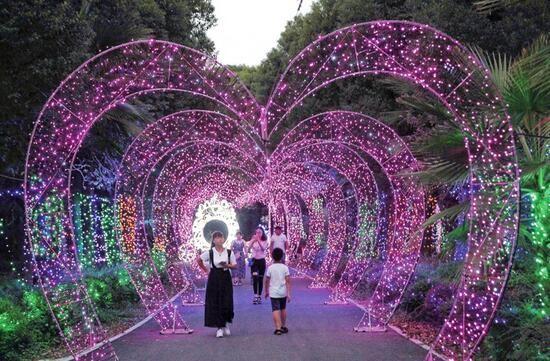 温州灯光节:灯海迷幻 花海迷人