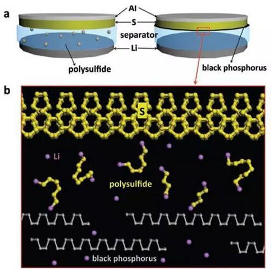 """黑磷改性的隔膜可限制锂硫电池中多硫的扩散""""/"""