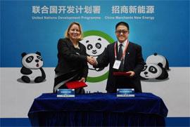 熊猫太阳能发电厂