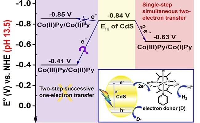 中科院太阳能研究部:发现半导体与分子催化剂之间可能的多电子转移机理