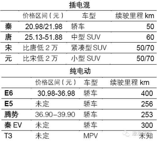 比亚迪:中国企业如何领跑全球新能源汽车产业?