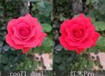 cool1 dual深度评测:双摄拍照强过红米Pro?