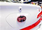 比亚迪在沪补贴面临腰斩 新能源车销量减速几成定局
