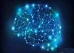 想和人脑一样智能?IBM的芯片级模仿才是关键