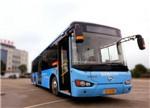 5家新能源车企骗补十多亿 苏州金龙客车竟成典型