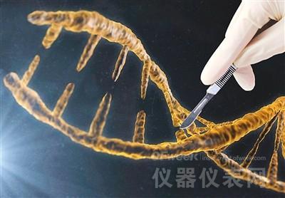 基因编辑:是福音还是祸根?