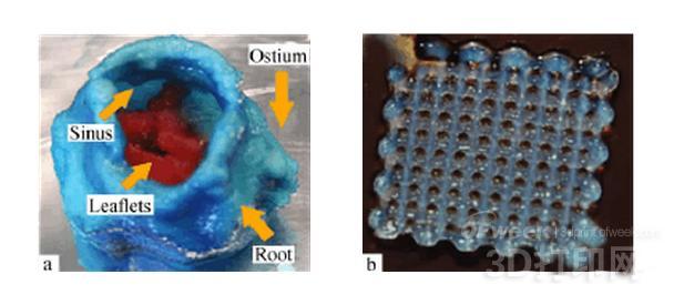 【深度】3D打印技术制备生物医用高分子材料的研究进展