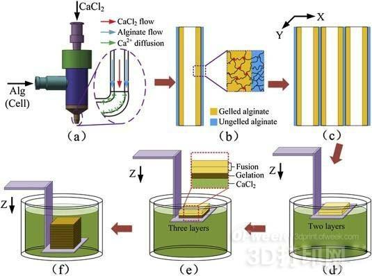 3D打印技术在医疗各个领域的应用实例分析