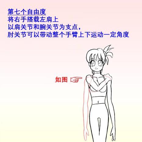 手臂关节结构图