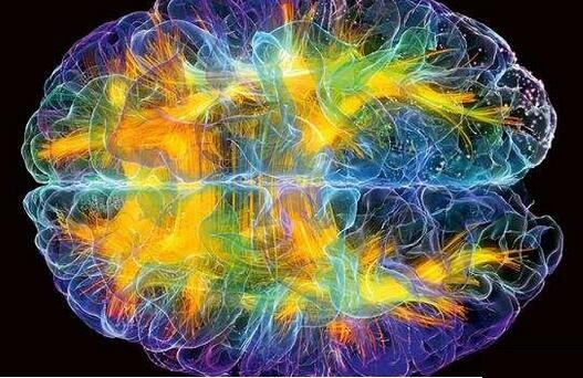 神经形态芯片模仿人类大脑设计 将取代CPU