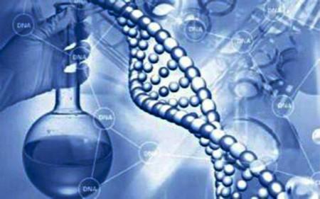 布局全球业务 华大基因成为测序行业领头羊