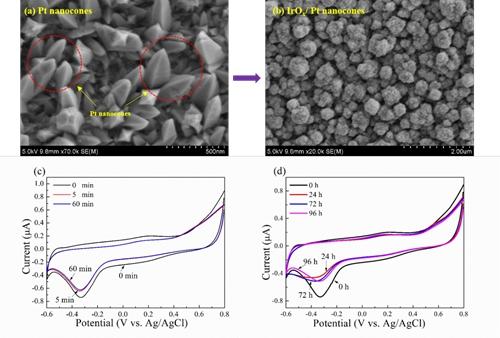 高性能氧化铱/铂纳米锥复合镀层提高神经电极电刺激性能