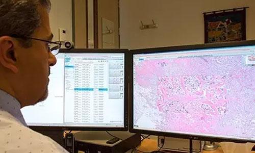 FDA批准飞利浦首个智能网络病理解决方案