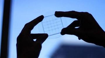 仪表上游:中韩学者合作研发新一代柔性图像传感器材料
